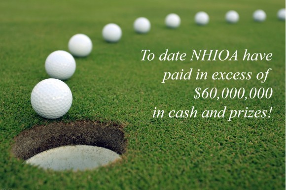 Image result for hole in one insurance